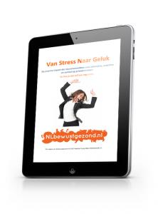 Van stress naar geluk ebook